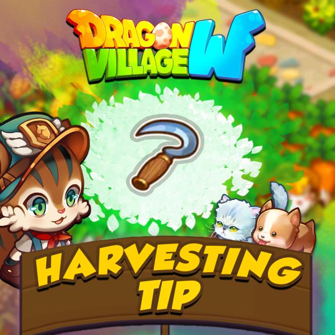 Dragon Village W: Notices - 【Harvesting Tips】 image 1