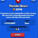 JOIN THUNDER BEARS!
