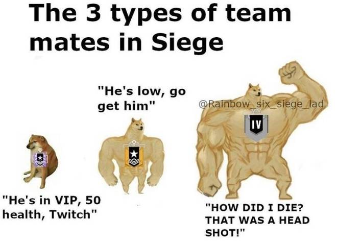 Rainbow Six: General - Stages Of A 5v1 image 1