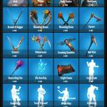 Daily item shop