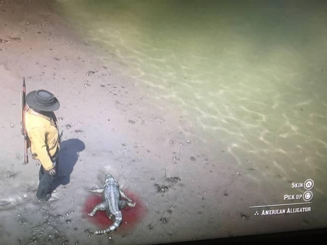 Red Dead Redemption: General - Baby Alligator 🐊 in RDO image 2
