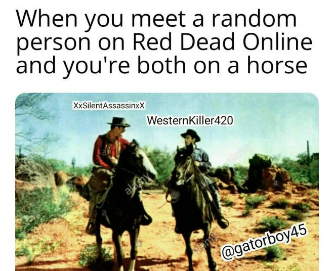 Red Dead Redemption: General - It be like that sometimes  image 2