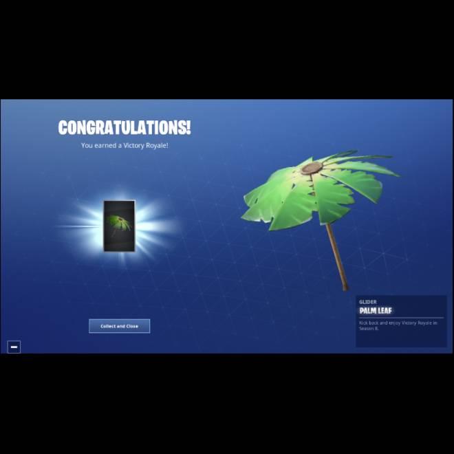 Fortnite: Battle Royale - I finally got it! 🍃 🌴 ✨  image 2