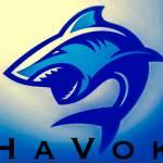 HaVok Update
