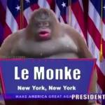 Le monke should be added to 7 days