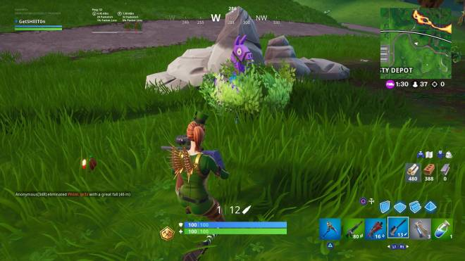 Fortnite: Battle Royale - Llama in a bush 😂😂🤦🏼‍♂️🤯 image 1