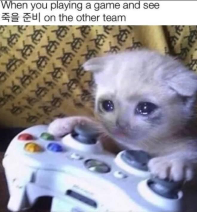 Call of Duty: Memes - True image 1