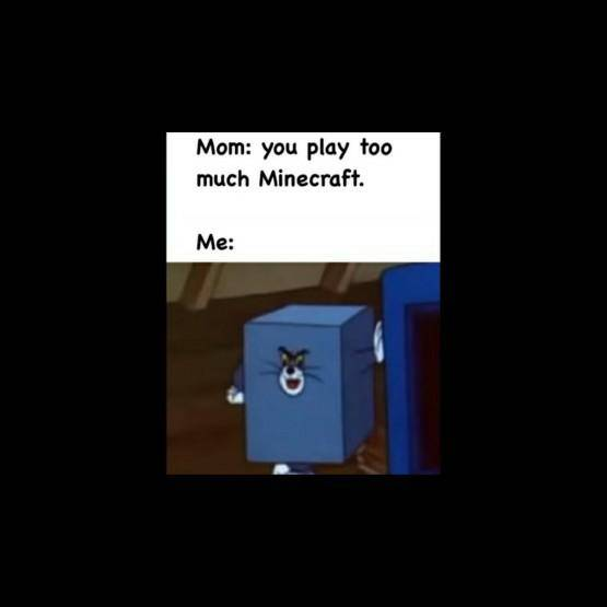 Minecraft: Memes - I don't play that much minecraft  image 1