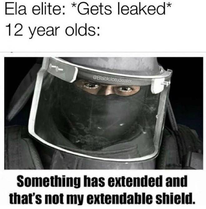Rainbow Six: Memes - I'm not 12 but can relate image 1