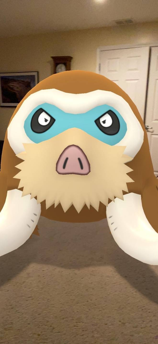 Pokemon: General - We bout to go out for community day image 1
