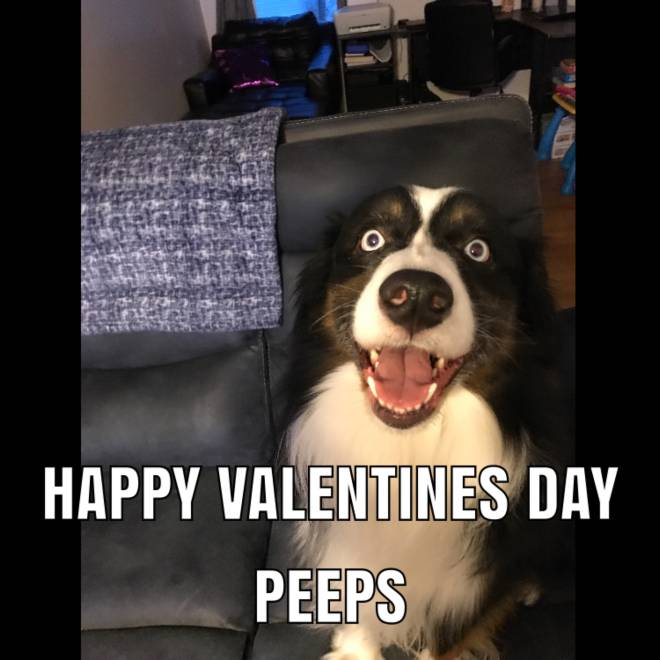 Off Topic: General - Happy Valentines Day image 2