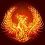 Hearthstone: Reborn in Phoenix Fire