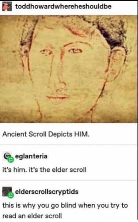 Elder Scrolls: Memes - It all makes sense now! image 1