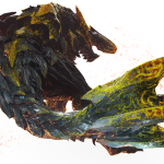 Raging Brachydios Observations and Tips!