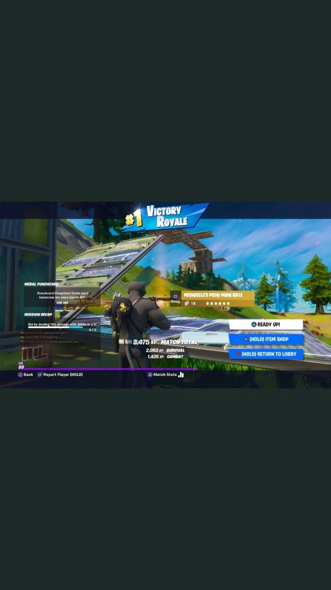 Fortnite: General - Three victory royals from yesterday let's go  image 3