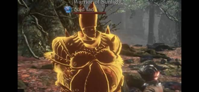 Dark Souls: Memes - Anyone know the name of this helmet? image 1