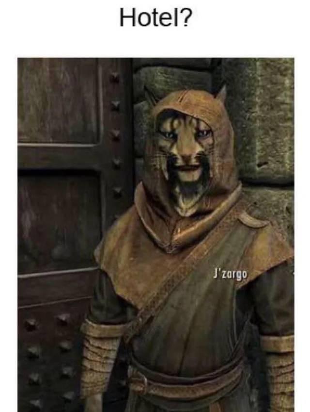 Elder Scrolls: General - Skyrim puns anyone? image 1