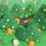 What the Star Fragment Hacks Means for Animal Crossing