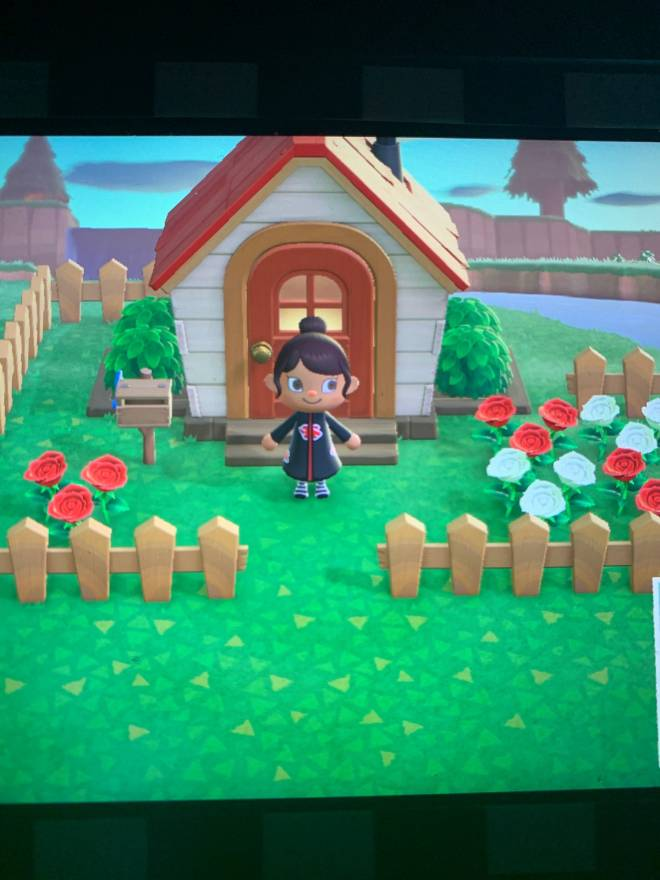Animal Crossing: Posts - I need friends dm me if you want to hang!! image 1