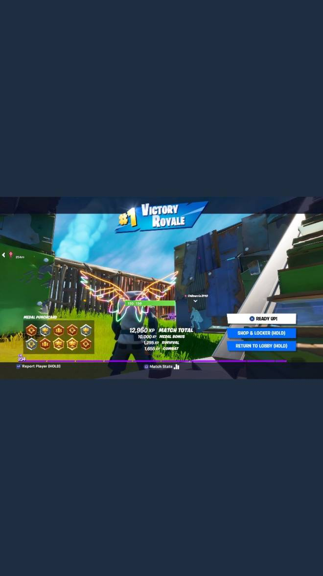 Fortnite: General - Two more victory royals from Thursday let's go  image 1