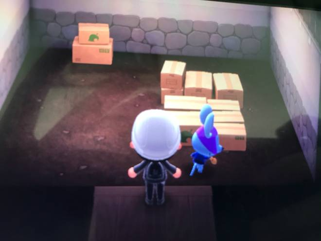 Animal Crossing: Posts - Rizzo in boxes  image 2