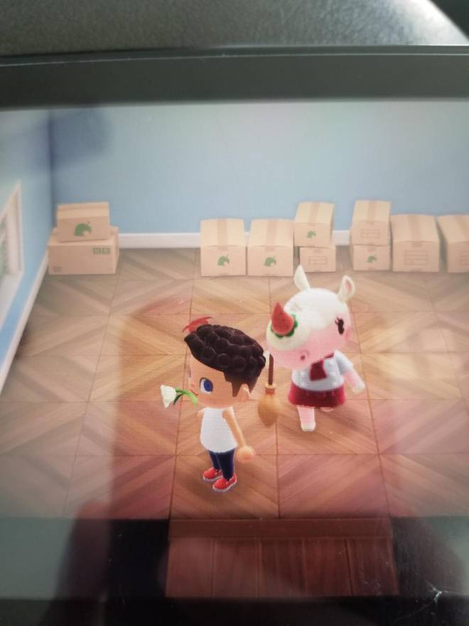 Animal Crossing: Posts - She's here image 2