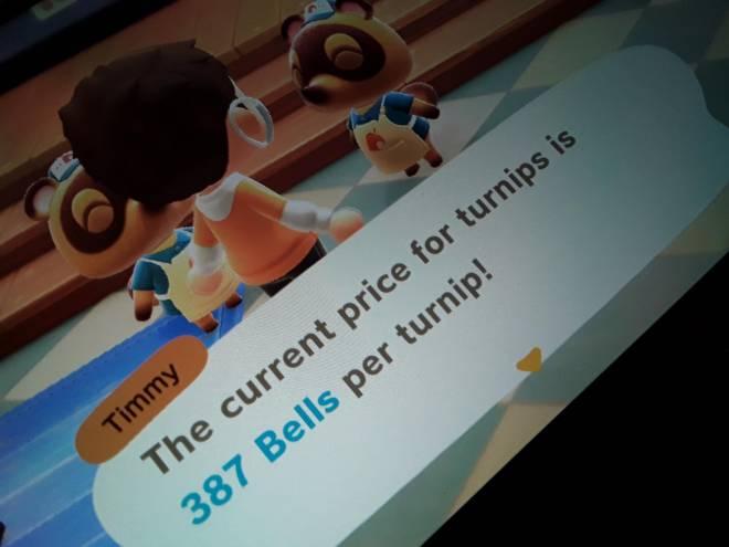 Animal Crossing: Posts - Turnip prices image 2