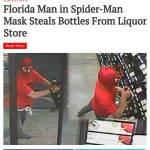 Update: spider