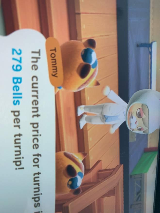 Animal Crossing: Posts - TURNUPS!!!!!!!! image 2