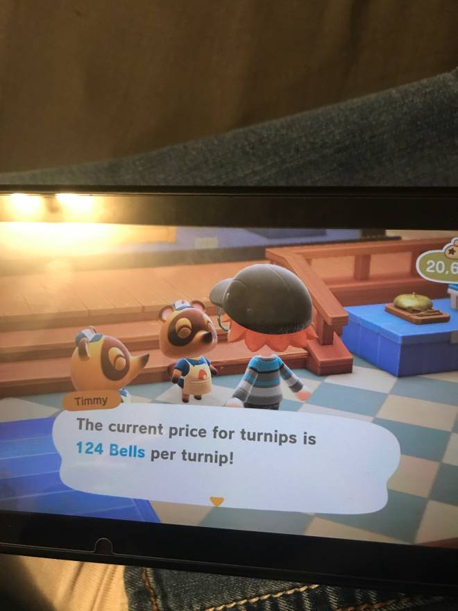 Animal Crossing: Turnips! - Turnips for 124 bells!! image 1