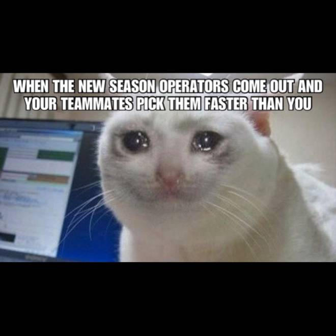 Rainbow Six: Memes - Which new season op do you consider is good?  image 1