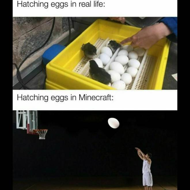 Minecraft: Memes - If I grab them, I YEET them image 1