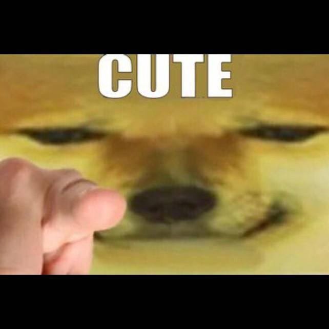 Destiny: General - You're beautiful  image 3