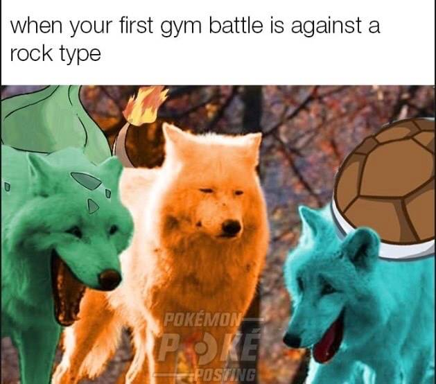 Pokemon: General - The early struggle what fire type Pokémon gotta deal with 😂 image 1