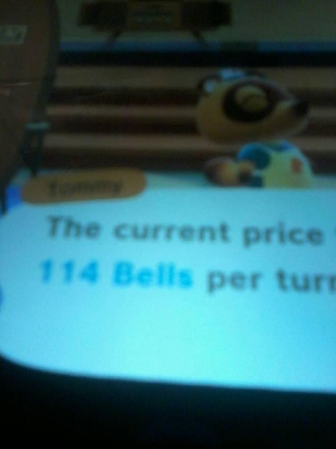 Animal Crossing: Turnips! - Turnips  image 1