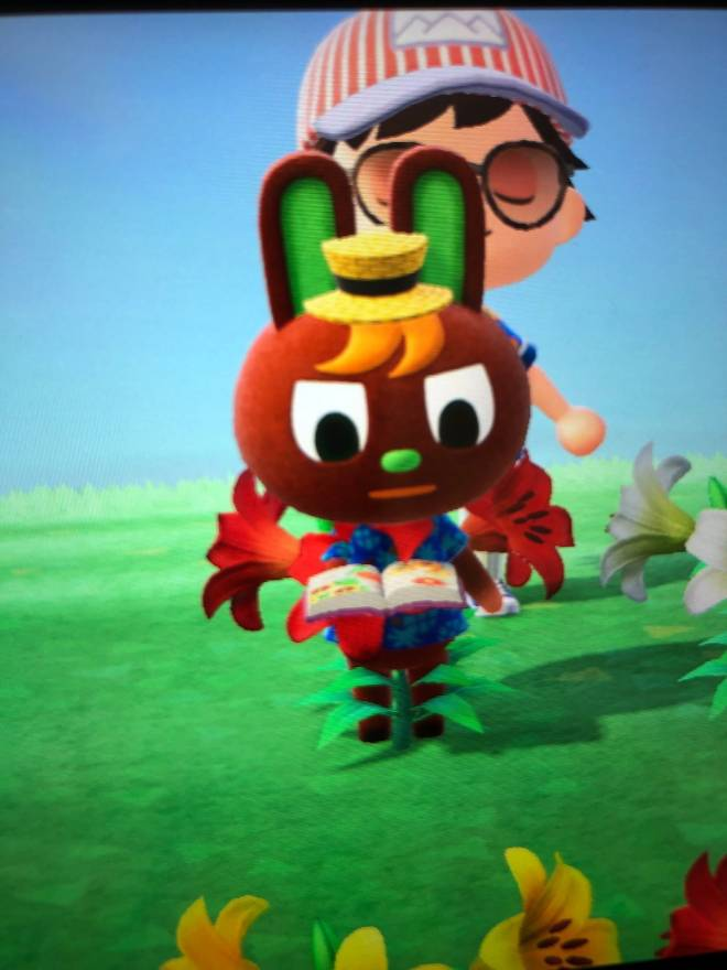 Animal Crossing: Posts - The best way to inspect a flower, is to become one with it image 1