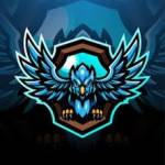 Come join Blue Sparrow Gaming