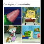 Stages of quarantine