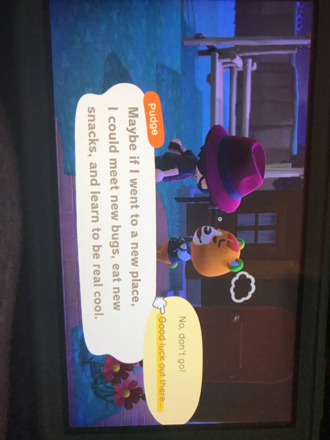 Animal Crossing: Posts - Pudge for sale!! image 1