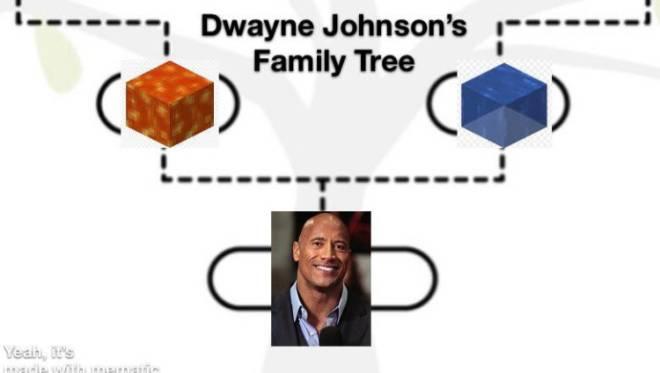 Entertainment: General - Dwayne the cobblestone Johnson image 1