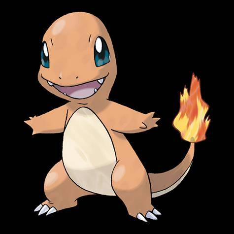 Pokemon: General - CHARIZARD EVOLUTION LINE APPRECATION WEEK!  POST YOUR CHARMANDER HERE! image 3