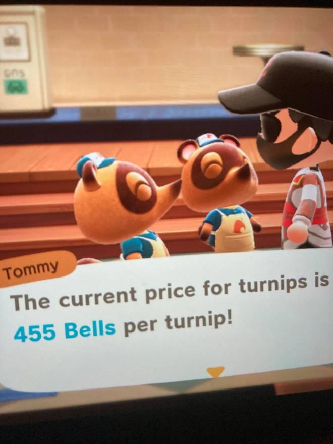 Animal Crossing: Posts - (Closed) image 2
