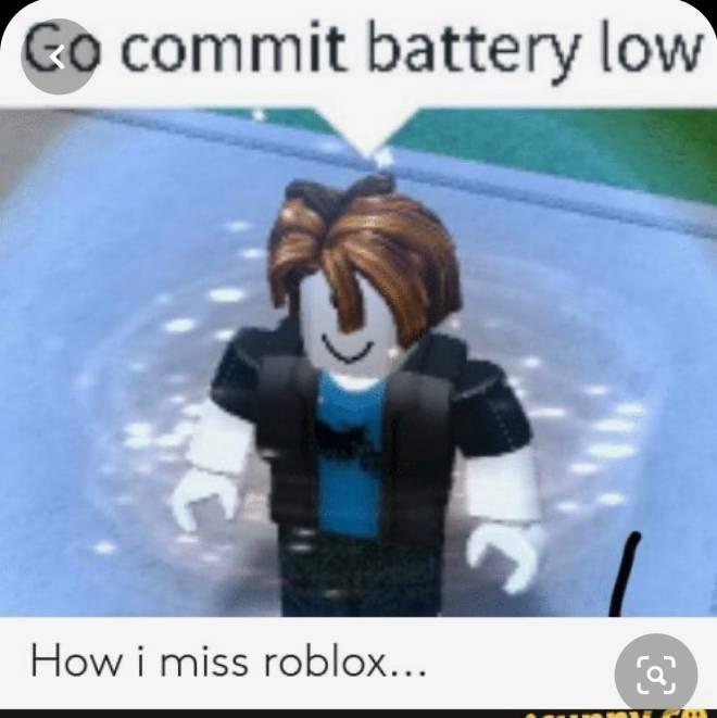 Roblox: General - Funny meme image 1