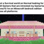 Minecraft Survival World