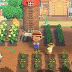 Animal Crossing Features On the Horizon