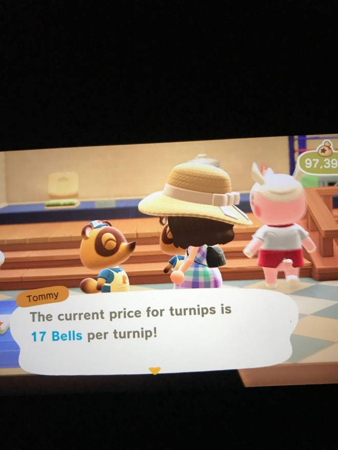 Animal Crossing: Turnips! - Lmao  image 2