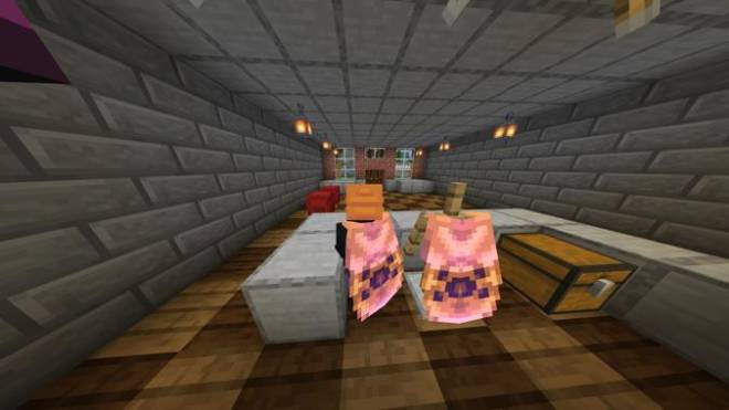 Minecraft: Memes - Two Elytra! image 2