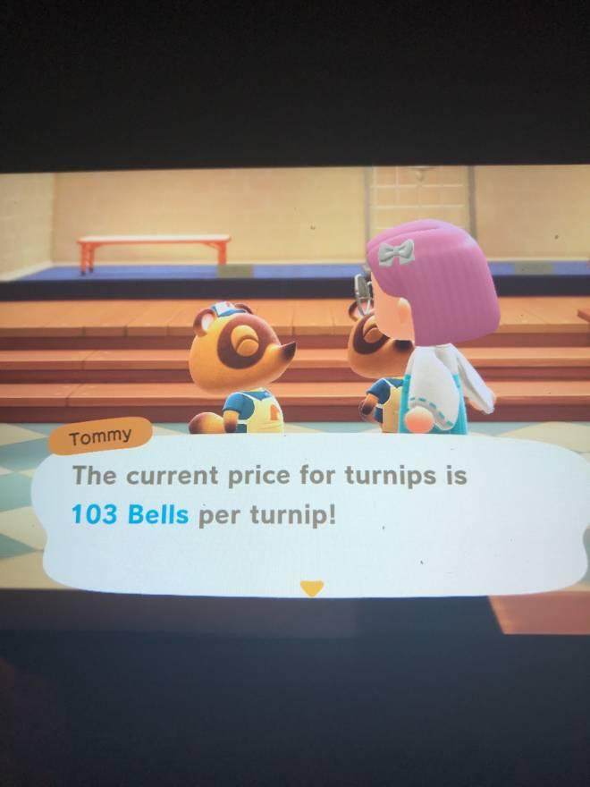 Animal Crossing: Turnips! - 103 turnip prices image 1