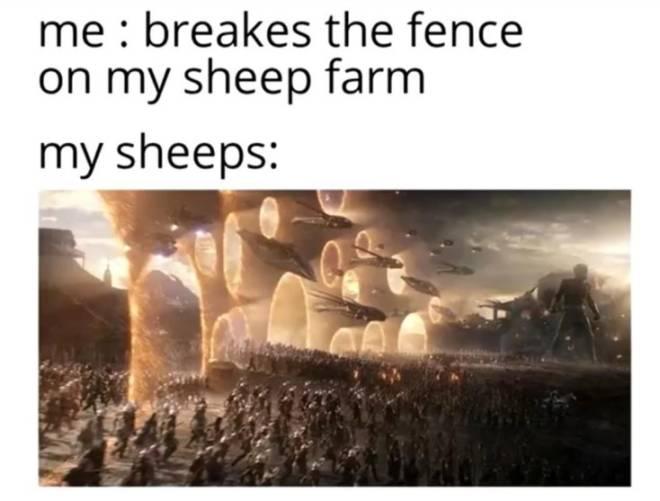 Minecraft: Memes - 😂  image 1