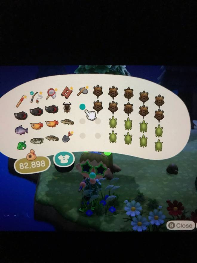 Animal Crossing: Posts - Big Fish Island nah... Turtle Island #TurtleGang image 1